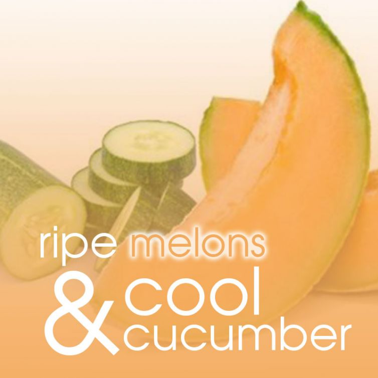 scrub in a TUB 3oz <br> Summer Melon