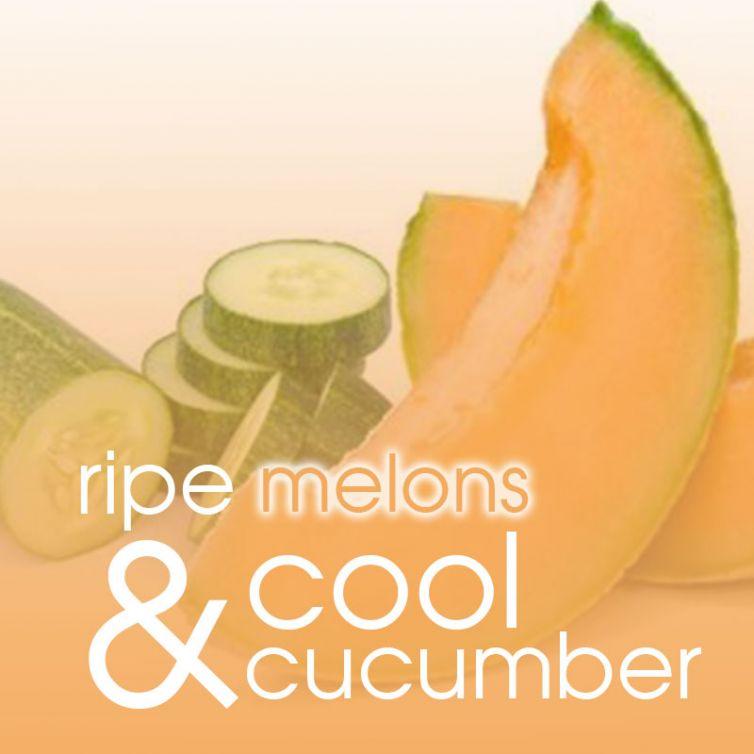 scrub in a TUB 22oz<br>Summer Melon