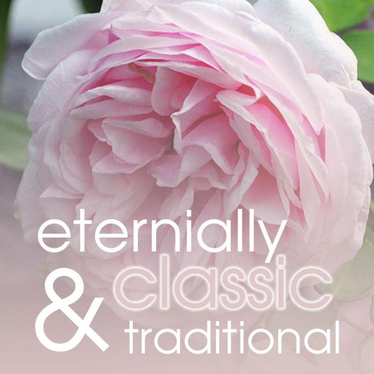 fragrance OIL 50ml<br>Victorian Rose